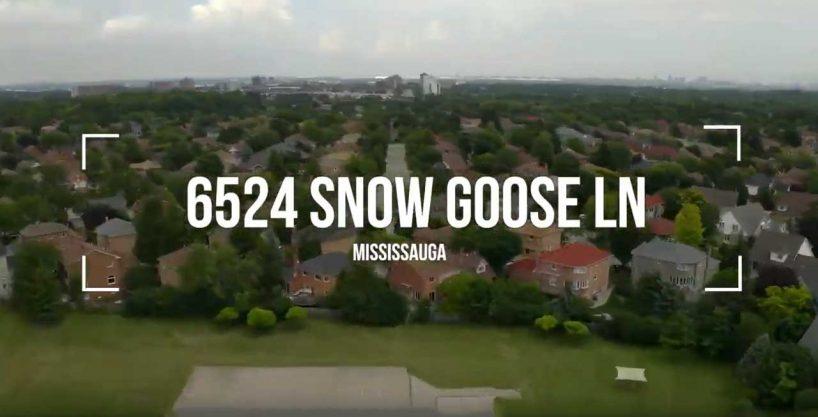 6524 Snow Goose Lane